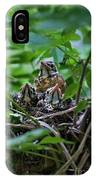Robin Chicks In Nest. IPhone Case
