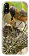 Robin Feeding Young IPhone Case