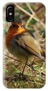 Robin In Hedgerow 2 Inch Donegal IPhone Case