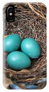 Robin Nest IPhone Case
