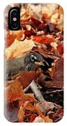Robin Playing In Fallen Leaves IPhone Case
