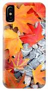Rock Garden Autumn Leaves IPhone Case