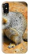 Rock Squirrel IPhone Case