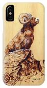Rocky Mountain Bighorn Sheep IPhone Case