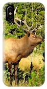 Rocky Mountain Elk IPhone Case