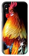 Rooster Portrait IPhone Case