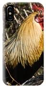 Rooster Protecting Hen IPhone Case