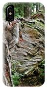Roots - Welcome To Olympic National Park Wa Usa IPhone Case