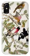 Rose Breasted Grosbeak IPhone Case