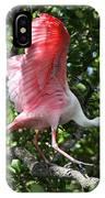 Roseate Spoonbill In Flight IPhone Case