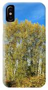Rosehips And Cottonwoods IPhone Case