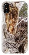 Rough Tree IPhone Case