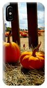 Row Of Pumpkins Sitting IPhone Case