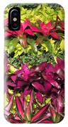 Rows Of Bromeliads IPhone Case