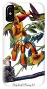 Ruby Throated Humming Bird Audubon Birds Of America 1st Edition 1840 Octavo Plate 253 IPhone Case