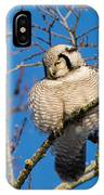 Ruffled Up IPhone Case