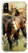 Running Free Horses IIi IPhone Case
