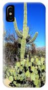 Sabino Canyon IPhone Case