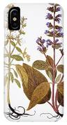 Sage, 1613 IPhone Case