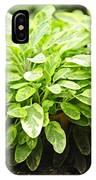 Sage Plant IPhone Case