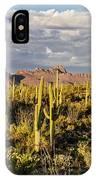 Saguaronatlparkeveninglight IPhone Case
