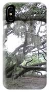 Saint Andrews Park Florida IPhone Case