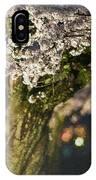 Sakura At Night IPhone Case