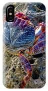 Sally Lightfoot Crab 1 IPhone Case
