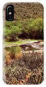Salt River Serenity IPhone Case