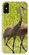 Sandhill Crane Family IPhone Case