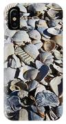 Sanibel Island Seashells I IPhone Case