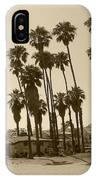 Santa Barbara Palms IPhone Case