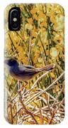 Sardinian Warbler IPhone Case