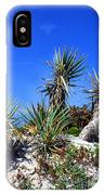 Saw Palmetto Canaveral National Seashore IPhone Case