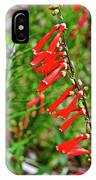 Scarlet Bugler In Rancho Santa Ana Botanic Garden In Claremont-californi IPhone Case
