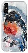 Scarlet Robin IPhone Case