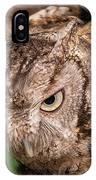 Screech Owl In Flight IPhone Case