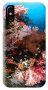 Sea Fans And Soft Coral, Fiji IPhone Case
