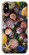 Sea Glass With Sea Shells IPhone Case