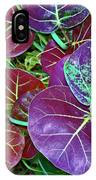 Sea Grape  IPhone Case