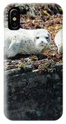 Sea Lions At Sea Lion Cove State Marine Conservation Area IPhone Case