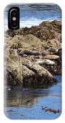Seal Island IPhone Case