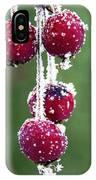 Seasonal Colors IPhone Case