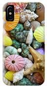 Seashells 3 IPhone Case
