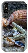 Seashells And Driftwood IPhone Case