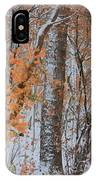 Seasons Overlapping IPhone Case