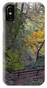 Romantic Autumn Rendezvous IPhone Case