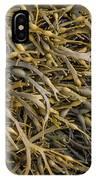 Seaweed On The Coast Of Iceland IPhone Case