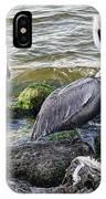 Sebastian Inlet State Park Vii IPhone Case