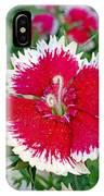Sedona Dianthus IPhone Case